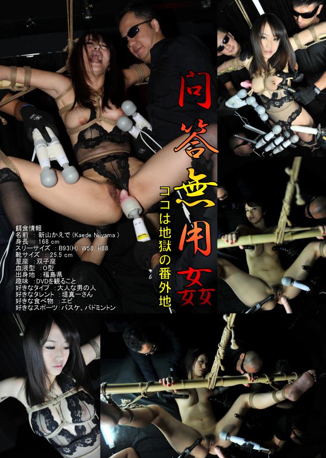 東京熱の高額女優「ザ・プレミアム 問答無用姦 新山かえで 新山かえで」